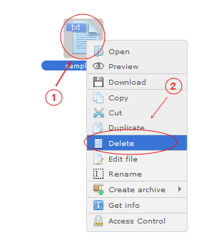 Manager Delete | CMS Tools Files | Documentation: Delete files/folders with file right click context menu (image)