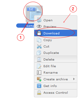 Manager Download | CMS Tools Files | Documentation: Download files with file right click context menu (image)