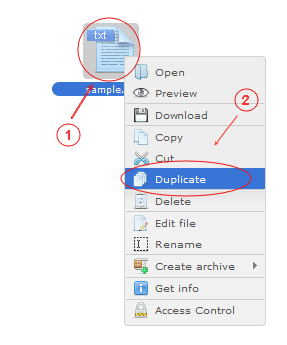 Manager Duplicate | CMS Tools Files | Documentation: Duplicate file/folder with file right click context menu (image)