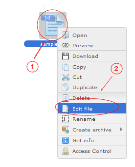 Manager Edit | CMS Tools Files | Documentation: Edit file with file right click context menu (image)