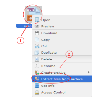 Manager Extract Files From Archive | CMS Tools Files | Documentation: Extract files/folders from archive with file right click context menu (image)