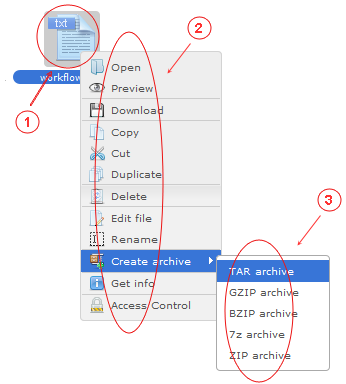 Manager Reference | CMS Tools Files | Documentation: Right click file context menu (image)
