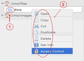 Manager Reference | CMS Tools Files | Documentation:Right click folder context menu (folder tree area) (image)
