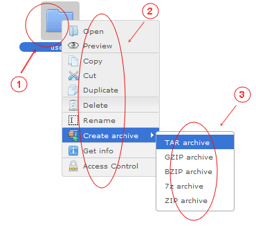 Manager Reference | CMS Tools Files | Documentation: Right click folder context menu (active folder area) (image)