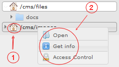 Manager Reference | CMS Tools Files | Documentation:Right click volume context menu (image)