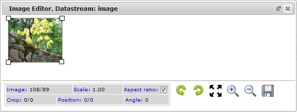 New Edit Page Data Streams | CMS Tools Pages | Documentation: datastream Image editor (image)